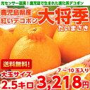 【送料無料】【光センサー選果】厳しい糖度・酸度の基準をクリア...
