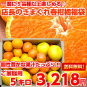 【送料無料】【訳あり】個性豊かな果汁たっぷり♪5種類以上の柑橘が楽しめる店長のきまぐれ春の柑橘福袋