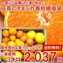 【送料無料】【訳あり】個性豊かな果汁たっぷり♪5種類以上の柑橘が楽しめる店長のきまぐれ春柑橘福袋3kg【北海道・沖縄・一部離島は別途300円】【楽ギフ_のし】【楽ギフ_のし宛書】