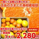 【送料無料】【お試し】【訳あり】個性豊かな果汁たっぷり♪5種類以上の柑橘が楽しめる店長のきまぐれ春の