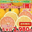 【送料無料】お砂糖は必要ありません!日本向けグレープフルーツの最高峰!フロリダ産完熟グレープフルーツ「雅」大・中玉サイズ ルビー種5kg【北海道・沖縄・一部離島は別途300円】】