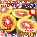 送料無料 キウイフルーツ レインボーレッド全国でも数箇所しか栽培されていない常識を覆すほど甘~い♪キウイフルーツ山梨産 レインボーレッド1.2kg【北海道、沖縄、一部離島は別途800円】