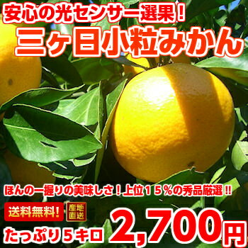 Carefully selected, goods do not pass only the top 15 percent! Three months, Mikan (kotsubu) S size with 5 Kg