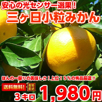 Carefully selected, goods do not pass only the top 15 percent! Three months, Mikan (kotsubu) S size 3 Kg