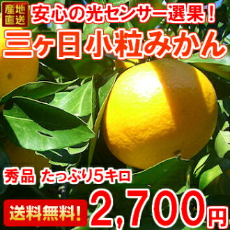 Carefully selected, goods do not pass only the top 15 percent! Three months, Orange S-size with 5 kg