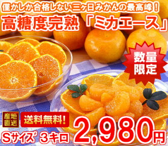 Maximum of three months, luxury brands high Brix ripe three months, orange 'ミカエース's size 3 kg (Hokkaido, Okinawa and remote islands are 300 yen)