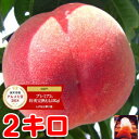 お中元 ギフト もも フルーツギフトグルメ大賞「桃部門」通算6度受賞!!糖度13度保障の