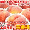 今シーズン最後の感謝価格!【送料無料】【光センサー選果】桃とマンゴーをミックスさせたような味わい♪初