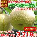 【送料無料】【光センサー選果】地元浜松の大玉...