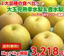 【送料無料】【光センサー選果】【糖度保障】ハイテク光センサー選果で糖度保障!贅沢な2大赤梨の食べ比べ