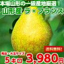 【送料無料】【秀品】豊かな香り、とろ〜り果肉が絶品♪本場山形の一級産地厳選!!果実
