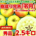 送料無料 ぐんま名月 りんご フルーツギフトサンふじ以上とも言われる美味しさ♪樹成り完熟ぐんま名月
