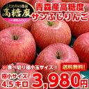 【送料無料】【りんご】【極小玉サイズ】糖度・内部品質センサー...