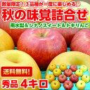 送料無料 りんご 梨 フルーツ詰合せ果物好きなら見逃せない3品種混合!!(南水梨・シナ