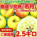 送料無料 ぐんま名月 りんご フルーツギフトサンふじ以上とも言われる美味しさ♪樹成り