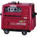 【直送】【代引不可】エンジンアーク溶接機兼発電機 EGW150MC-C 新ダイワ