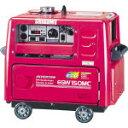 【直送】【代引不可】エンジンインバーターアーク溶接機兼発電機 150A EGW150MC-I 新ダイワ