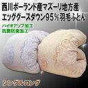 Nishikawa_egg1