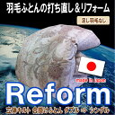 Reform_80gara_ds