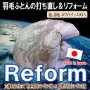 Reform_80gwg93