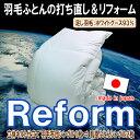 Reform_80wg93