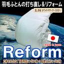 Reform_80wmg95