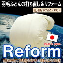 Reform_wg93