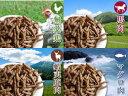 プライムケイズ 嵐山善兵衛 長寿一番 1650g規格 体調/皮膚/被毛/腰/健康サポート食【95】