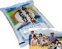 新潟県 妙高産キヌヒカリ 5キロ「26年産 新米」