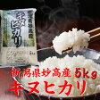 新潟県 妙高産キヌヒカリ 5kg「28年産 一等米」