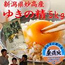 新潟妙高産「一等米」ゆきの精 5kg「28年産 無洗米」 新米