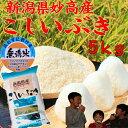無洗米 新潟県 妙高産 こしいぶき5kg「28年産 無洗米」