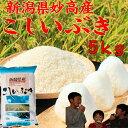 新潟県 妙高産こしいぶき5kg「27年産 一等米」