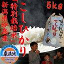 【無洗米】スーパーコシヒカリ5kg【特A】新潟県 妙高産【高級米】【特別栽培米】
