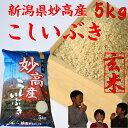 新潟県 妙高産こしいぶき5kg【玄米】【28年産 一等米】 新米