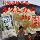 新潟県 妙高産キヌヒカリ【玄米】5kg【28年産 一等米】