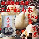 新潟県こがねもち5kg(餅米)(玄米)「28年産 一等米」(もち米です)