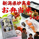 【お弁当米5kg】【新潟県妙高産】「28年産 新米」