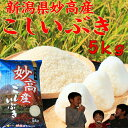 新潟県 妙高産こしいぶき5kg 「29年産 一等米」新米