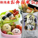 【お弁当米】5kg【お弁当 米5kg】お弁当に最適なお米令和元年
