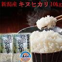 お米 無洗米 10kg 新米 令和3年 新潟産 キヌヒカリ 10kg 無洗米 お米/令和3年/2021/安いお米/お取り寄せ/おいしいお米/美味しいお米/新潟/米/新潟産