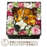 愛するペットがお花に!プリザーブドフラワー ギフト Gift 【】【写真から作るお花 マイペットフラワー ボックス 名前入り】母の日【smtb-s】【犬 猫 うさぎ】誕生日プレゼン