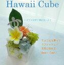 ハワイの可愛さをキューブにとじこめて☆