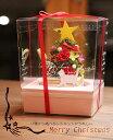 【送料無料】クリスマスツリー プリザーブドフラワー ケース入り 誕生日プレゼント 女性 クリスマス 犬 猫 うさぎ 卓上ツリー トナカイ となかい