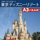 【あす楽】東京ディズニーリゾート1DAYパスポート ぺアチケット 景品、二次会 景品、二次会景品、セット、ビンゴ、目録、ゴルフコンペ、忘年会、新年会、レビュー記入で送料無料