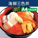 【あす楽】二次会 景品  海鮮三色丼、抽選会 景品、忘年会、目録、セット、新年会、ビンゴ