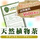 スリムティー天然植物茶 6日分サンプル...:myshop-myshow:10000006