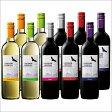 【送料無料】コンドール・アンディーノ赤白飲み比べ10本セット[赤ワイン][白ワイン][ワインセット][赤:フルボディ][白:辛口]