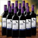 【送料無料】コンドール・アンディーノ・マルベック12本セット(アルゼンチン/赤・FB)750ml[赤ワイン][ワインセット][赤:フルボディ] 【7777380】