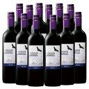 【送料無料】コンドール・アンディーノ・マルベック12本セット(アルゼンチン 赤 フルボディ) 赤ワイン ワインセッ…